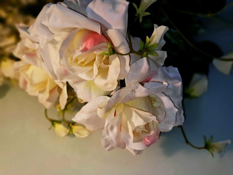Foto da ilustração do cartão de cumprimentos do ramalhete das rosas do fundo do casamento do dia de Valentine Women bonito das ro fotografia de stock royalty free
