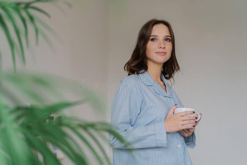 A foto da jovem mulher pensativa com cabelo escuro, aparência atraente, aquece-se com a bebida quente, vestida no traje doméstico foto de stock royalty free