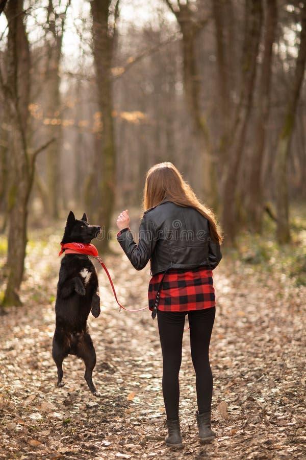 Foto da menina bonita com seu cão preto na madeira Vista traseira fotos de stock