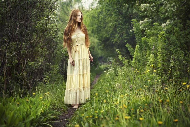 Foto da mulher romântica na floresta feericamente foto de stock