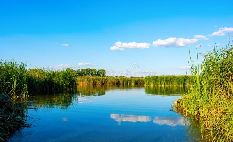 Foto da natureza em torno do lago azul bonito, pescando o lugar imagem de stock royalty free