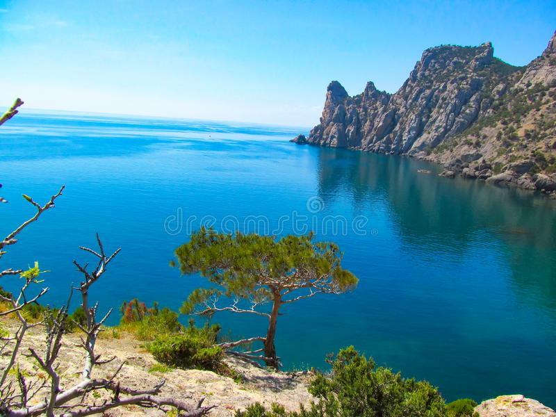 Foto da paisagem com a imagem de uma árvore só nos subúrbios da montanha com o fundo do Mar Negro foto de stock