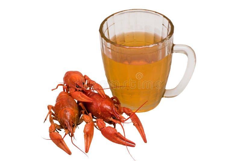 Foto de cangrejos hervidos con un vidrio de cerveza foto de archivo