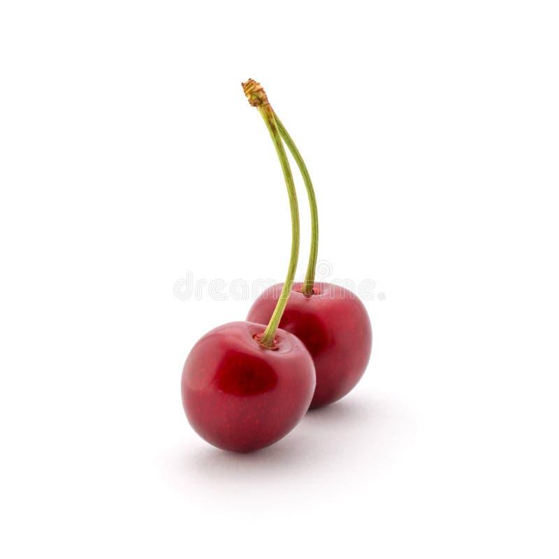 Foto de cerezas rojas con las colas aisladas en el fondo blanco fotos de archivo
