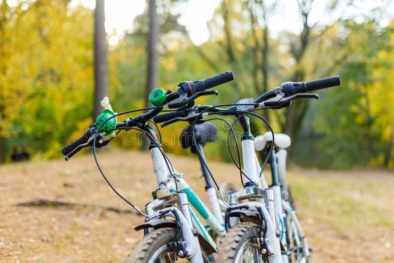 Foto de duas bicicletas no fundo borrado do parque do outono fotos de stock
