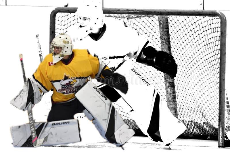 Foto de la acción del hockey fotografía de archivo libre de regalías