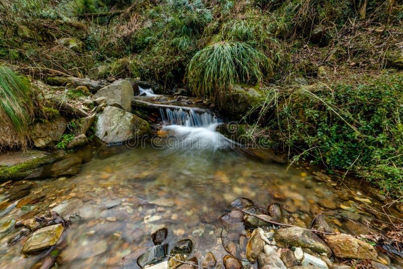 Foto de la corriente lechosa en Himalaya - cascada del agua foto de archivo