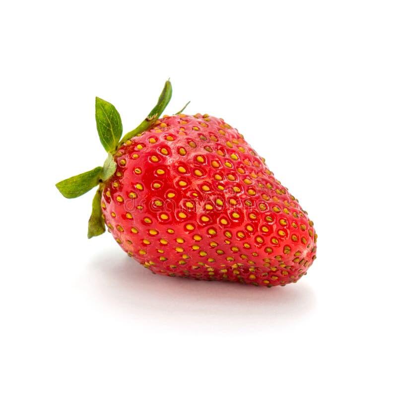 Foto de la fresa roja aislada en el fondo blanco fotografía de archivo libre de regalías