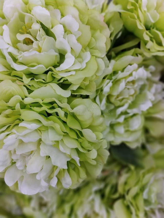 Foto de la imagen de la flor artificial imagen de archivo