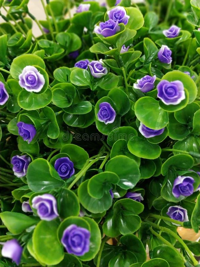 Foto de la imagen de la flor artificial fotos de archivo