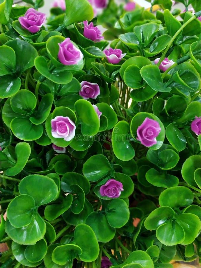 Foto de la imagen de la flor artificial imagen de archivo libre de regalías