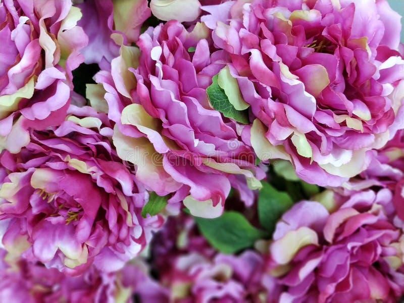Foto de la imagen de la flor artificial foto de archivo