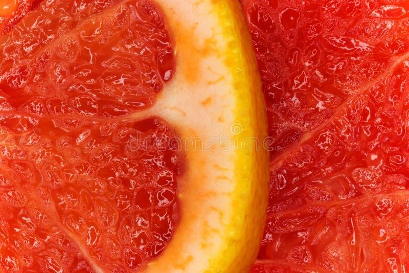 Foto de la macro del pomelo foto de archivo