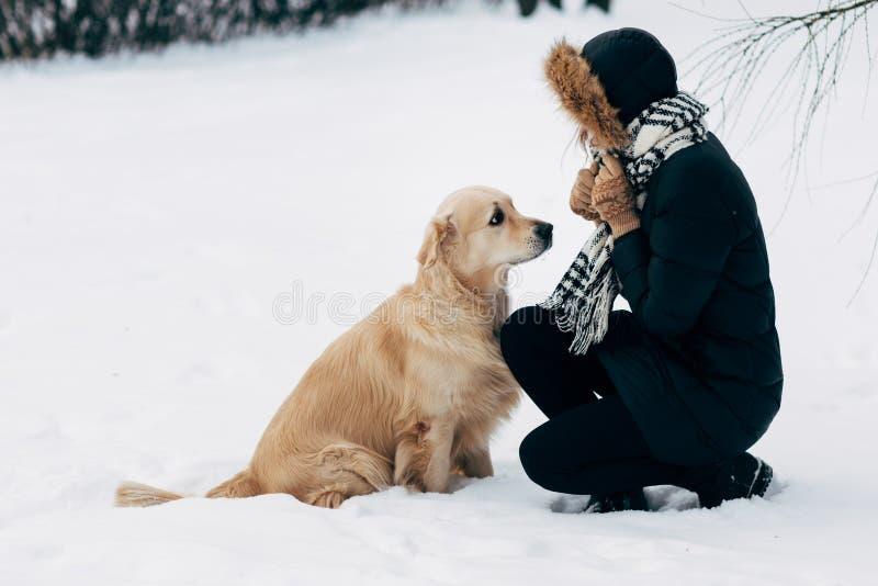 Foto de la muchacha con Labrador en paseo en parque del invierno imagen de archivo libre de regalías