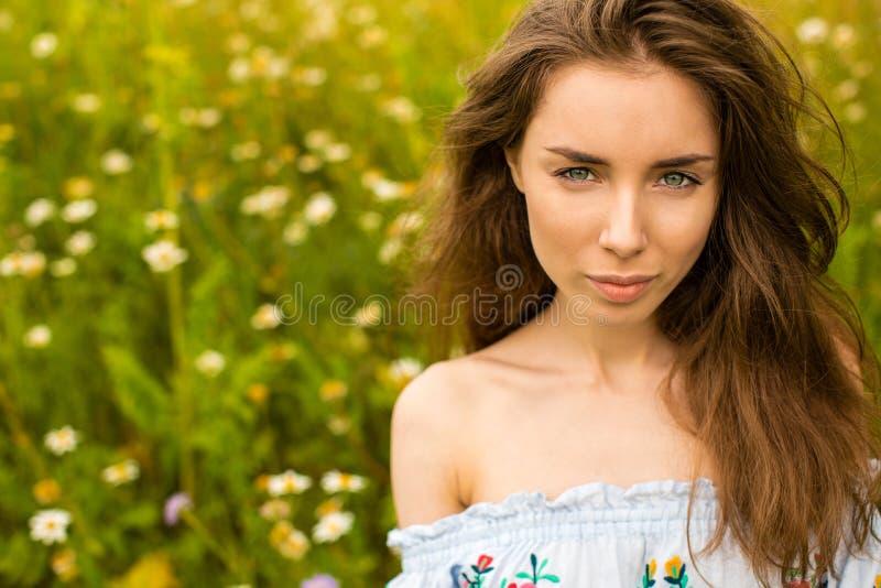 Foto de la mujer morena bonita en campo de la manzanilla fotografía de archivo libre de regalías