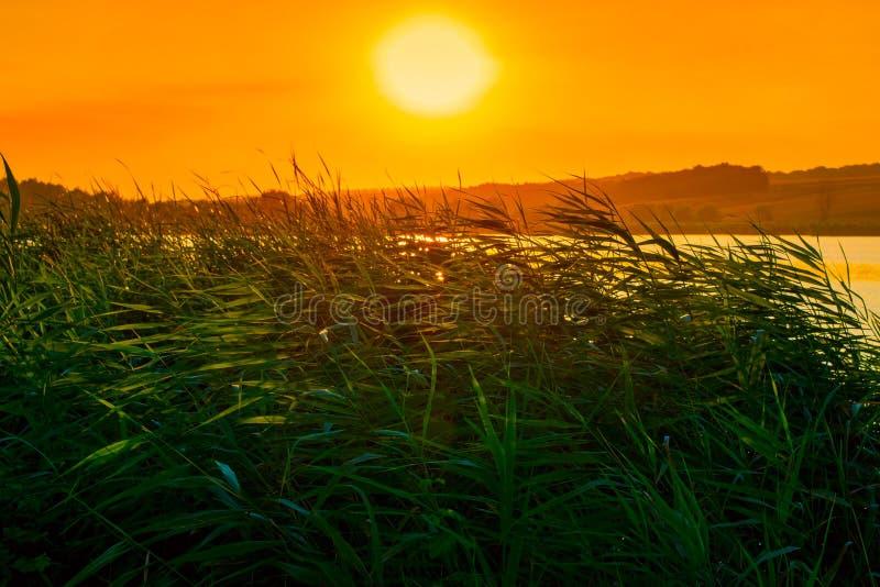 Foto de la naturaleza alrededor del lago azul hermoso en puesta del sol foto de archivo libre de regalías