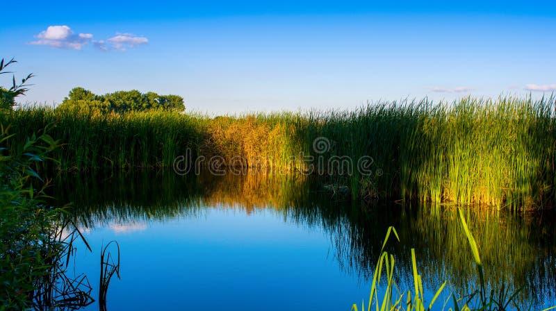 Foto de la naturaleza alrededor del lago azul hermoso, pescando el lugar imagenes de archivo