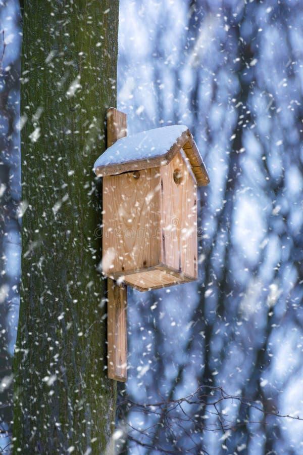 Foto de la pajarera de madera en el bosque en invierno imágenes de archivo libres de regalías