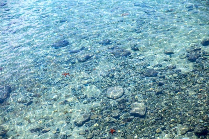 Foto de la parte inferior de mar imágenes de archivo libres de regalías