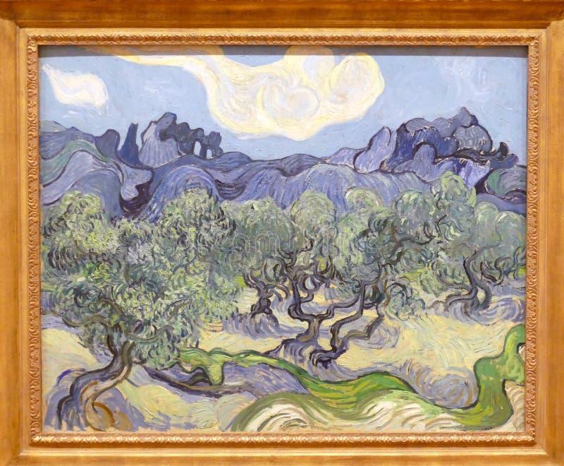 Foto de la pintura original famosa de Vincent Van Gogh: Olivos del ` en un ` montañoso del paisaje fotografía de archivo libre de regalías