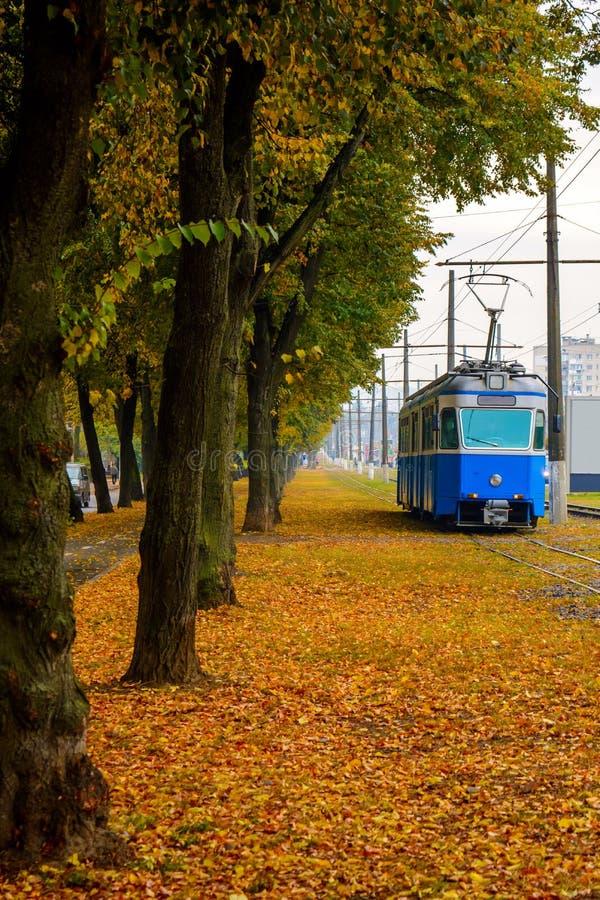 Foto de la tranvía azul cerca del parque anaranjado del otoño con las hojas anaranjadas imágenes de archivo libres de regalías