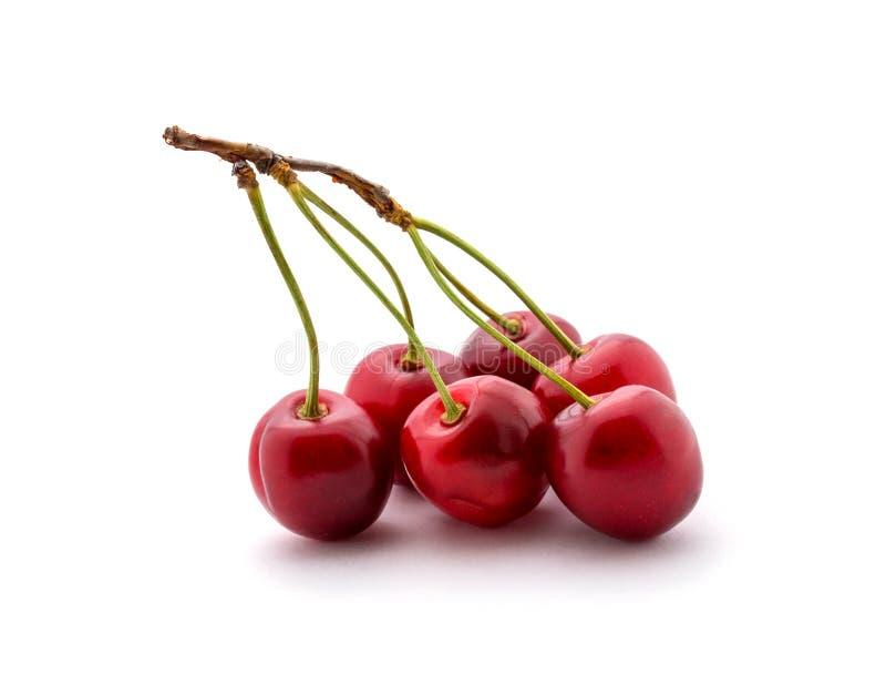 Foto de las cerezas rojas aisladas en el fondo blanco imágenes de archivo libres de regalías