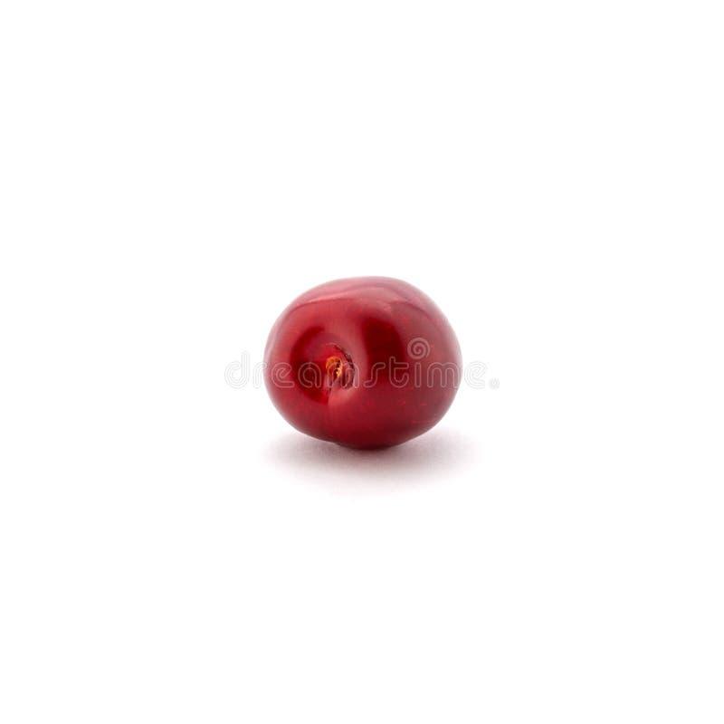 Foto de las cerezas rojas aisladas en el fondo blanco fotografía de archivo libre de regalías