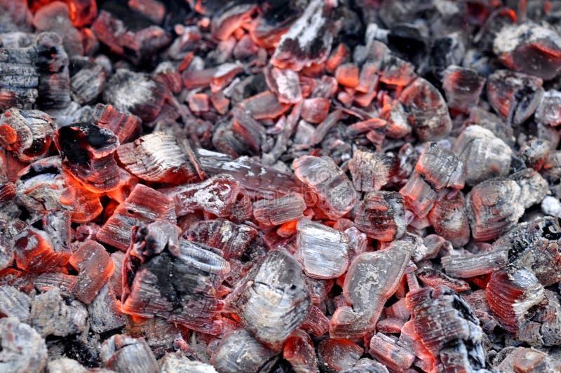 Foto de Live Coals Burning de brilho quente imagens de stock