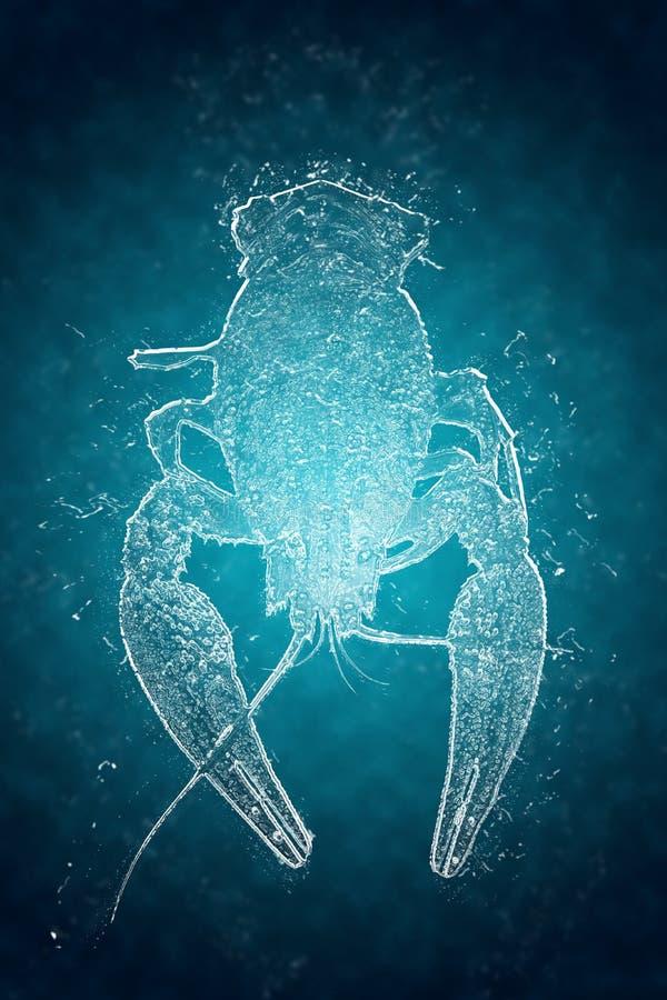 Foto de los cangrejos hechos del hielo libre illustration