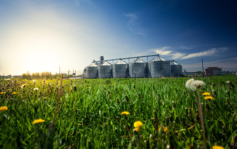 Foto de los elevadores de grano en prado en la puesta del sol imagenes de archivo