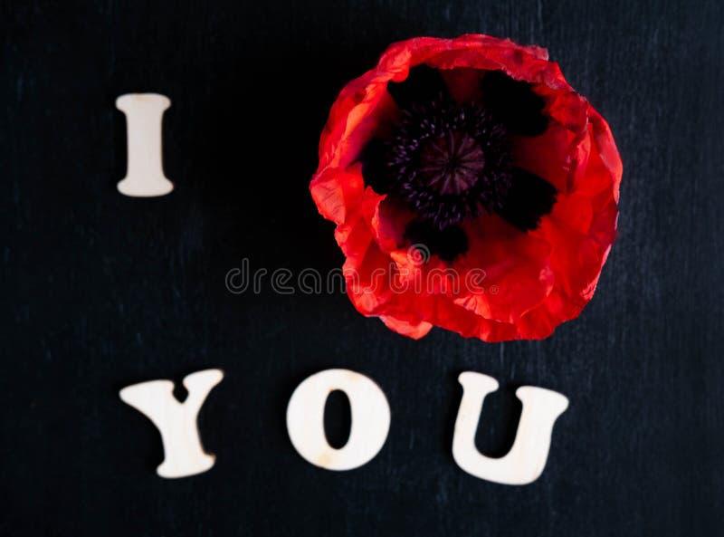 A foto de papoilas vermelhas em um fundo preto com as palavras ama-o O amor da inscrição flores você e das papoilas Vista foto de stock