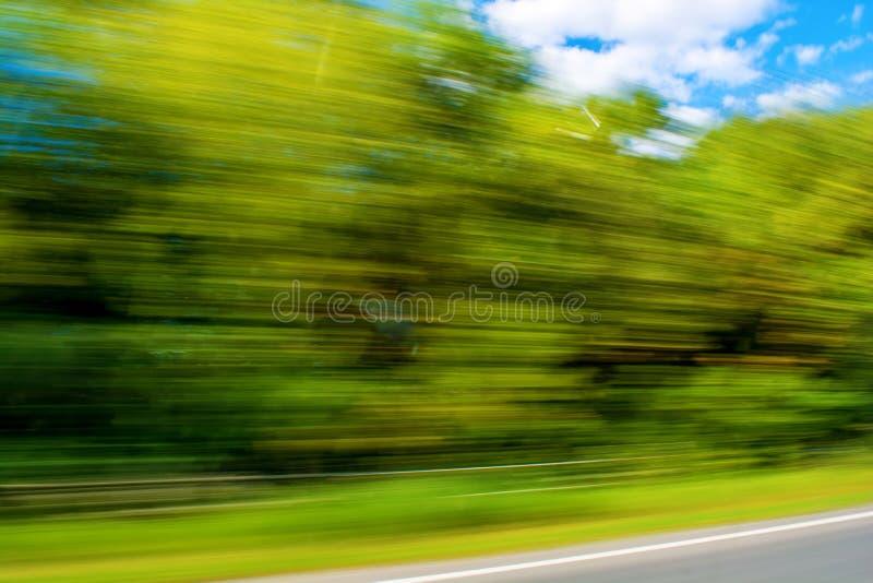 Foto de plantas verdes borrosas, fondo del movimiento fotos de archivo