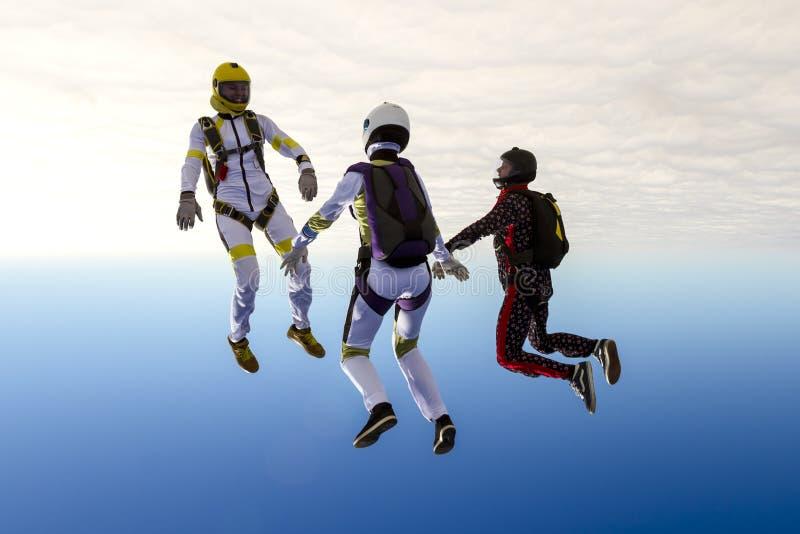 Foto de Skydiving imagen de archivo