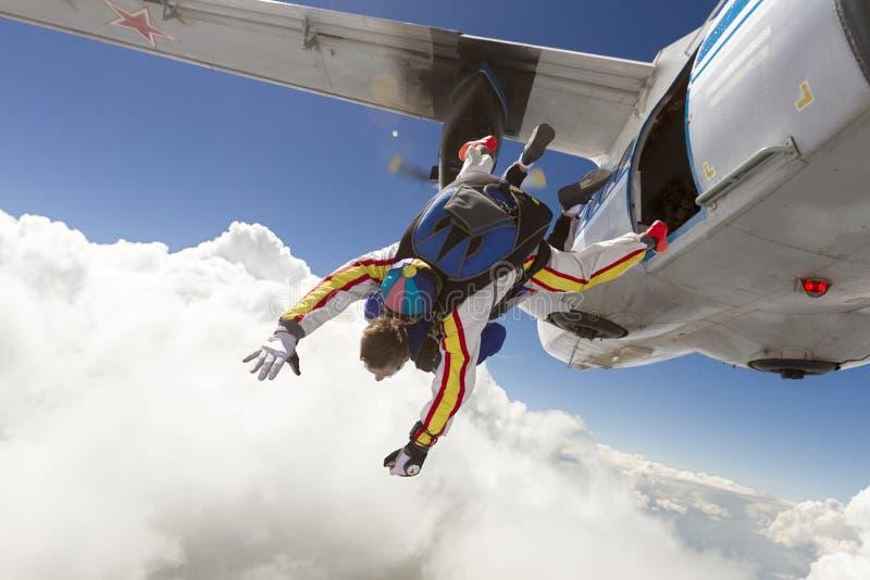 Foto de Skydiving tandem foto de stock royalty free