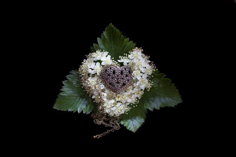 Foto de um coração dourado em um descanso das flores da cinza de montanha em um fundo preto imagens de stock royalty free