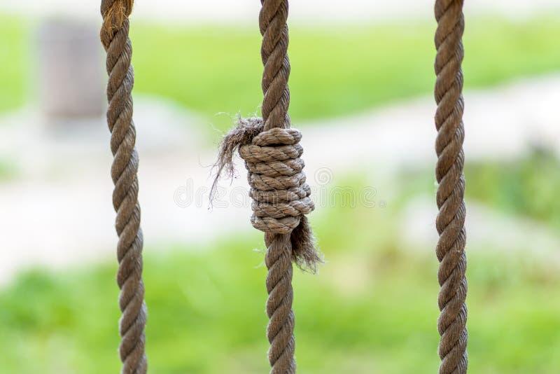 Foto de um nó da corda contra um fundo da grama fotografia de stock royalty free