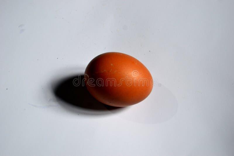 Foto de um ovo com um fundo branco fotografia de stock royalty free