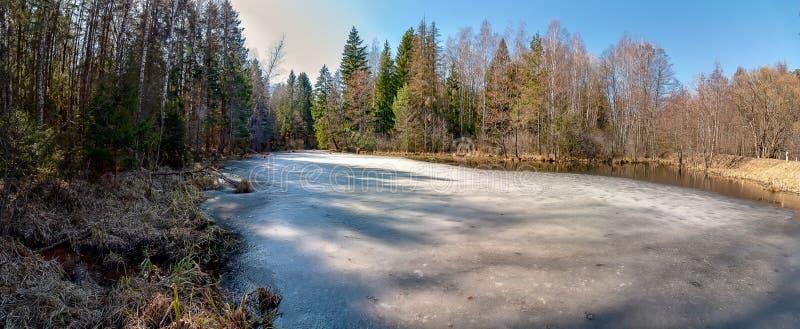Foto de um reservat?rio situado perto da floresta fotos de stock royalty free