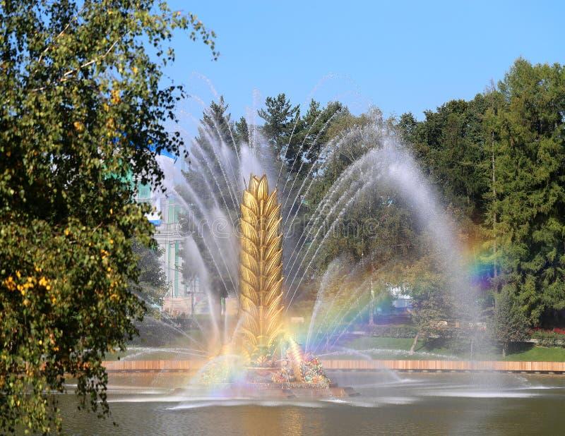 Foto de uma fonte macro bonita VDNH Moscou fotografia de stock