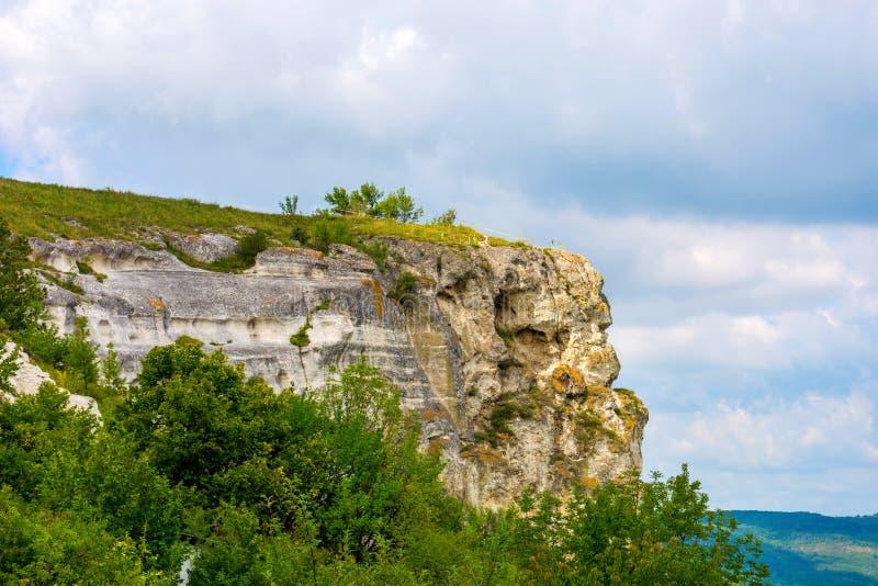 Foto de un alto acantilado hermoso y de plantas verdes imágenes de archivo libres de regalías