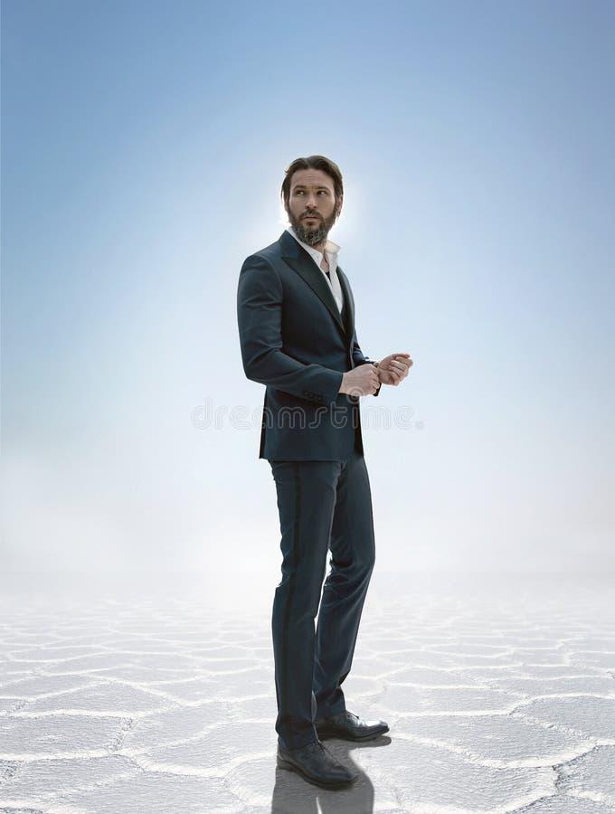 Foto de un hombre de negocios hermoso elegante imagen de archivo libre de regalías