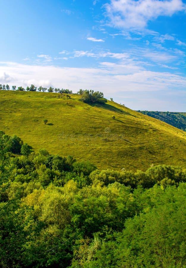 Foto de una colina hermosa y de una hierba verde foto de archivo