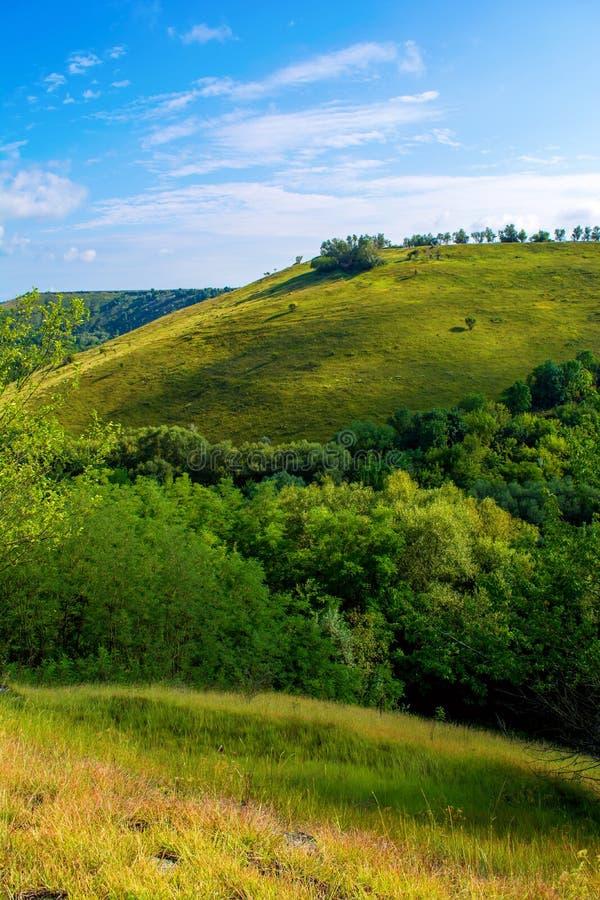 Foto de una colina hermosa y de una hierba verde imagenes de archivo