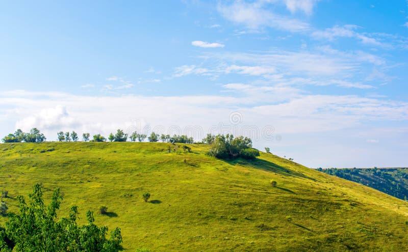 Foto de una colina hermosa y de una hierba verde fotografía de archivo libre de regalías