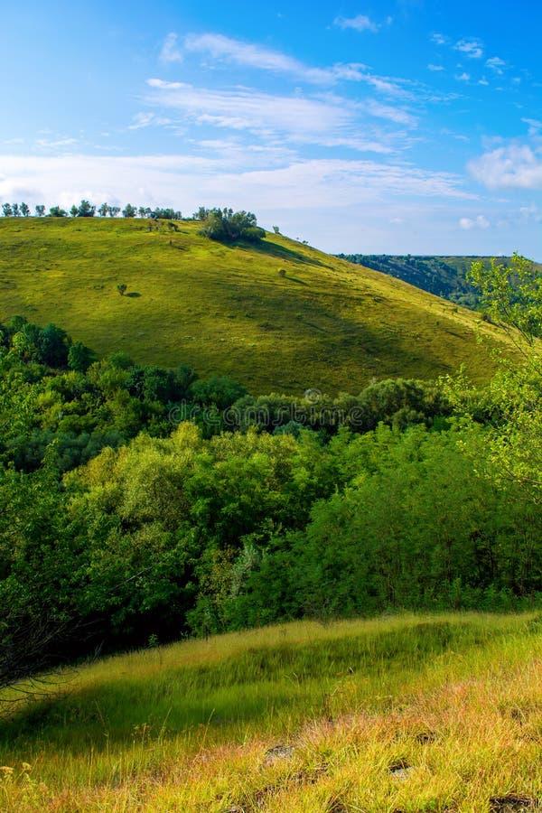Foto de una colina hermosa y de una hierba verde imágenes de archivo libres de regalías