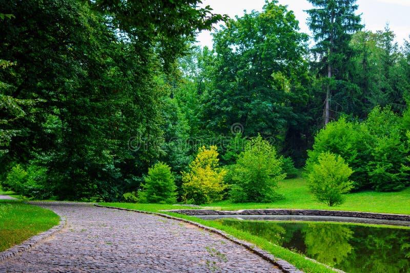 Foto del camino de piedra cerca del lago en parque verde en el verano foto de archivo