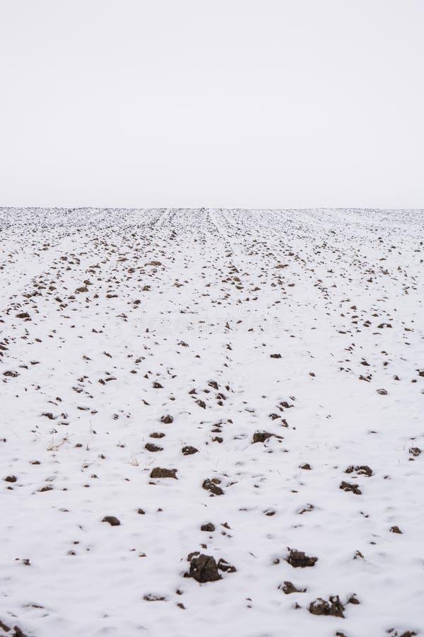 Foto del campo agrícola cubierta con nieve en invierno fotografía de archivo libre de regalías