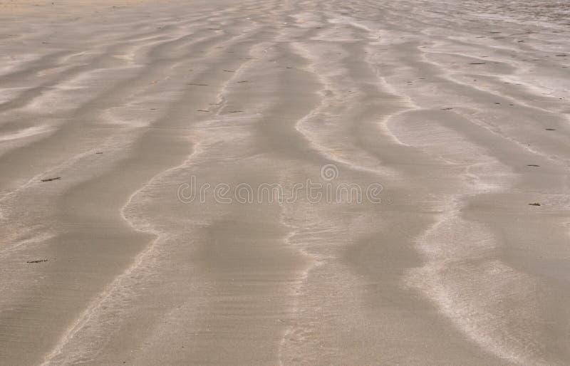 Foto del fondo y de la textura de la arena marrón del color imágenes de archivo libres de regalías