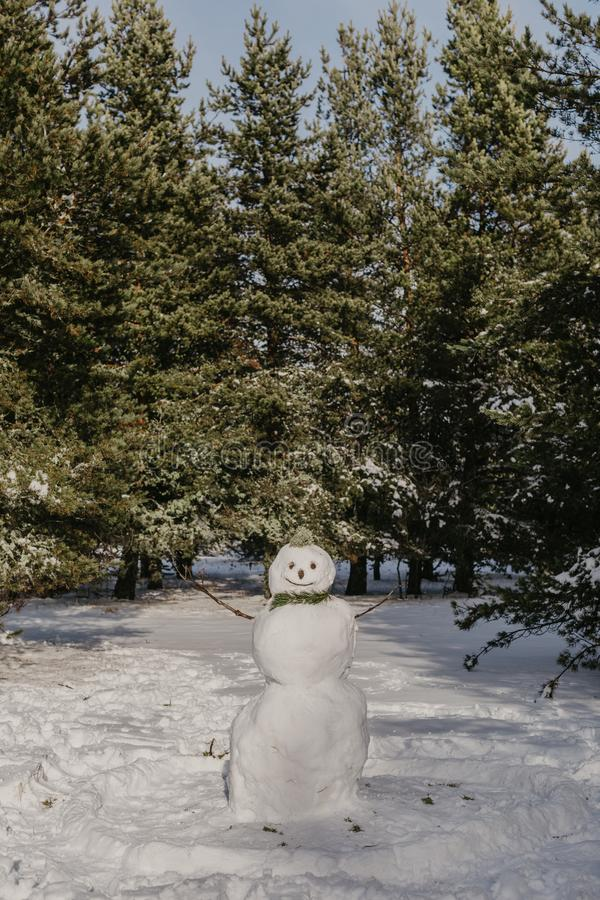 Foto del muñeco de nieve en el bosque imagenes de archivo