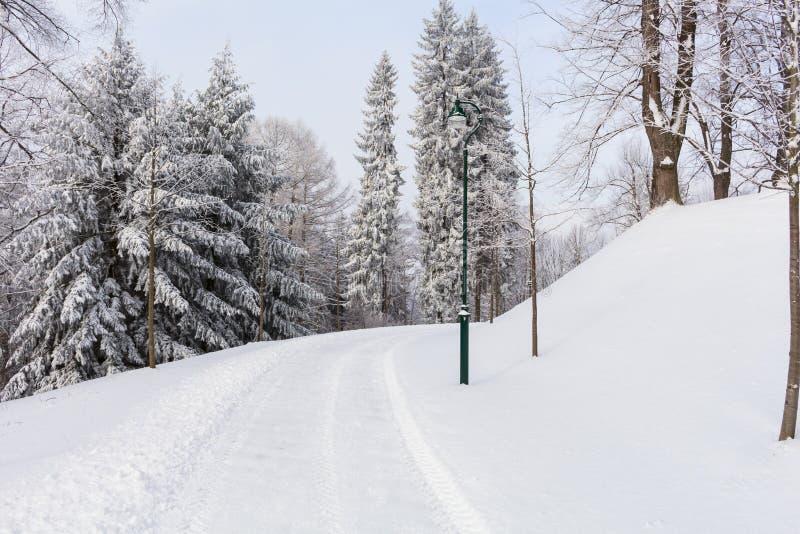 Foto del paisaje nevoso cubierta con nieve y el camino en invierno foto de archivo